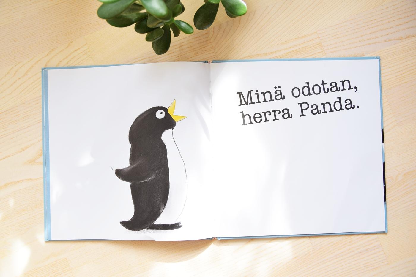 herra panda leipoo8.jpg