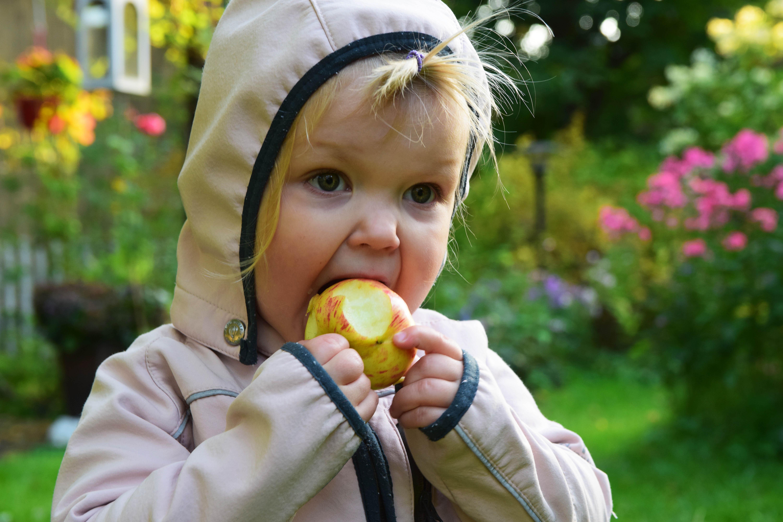 lapset syövät omppuja4.jpg