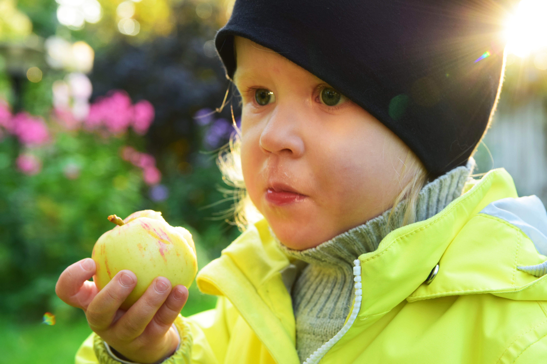 lapset syövät omppuja5.jpg
