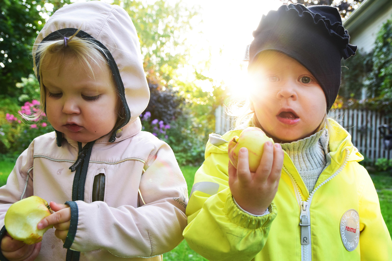 lapset syövät omppuja.jpg