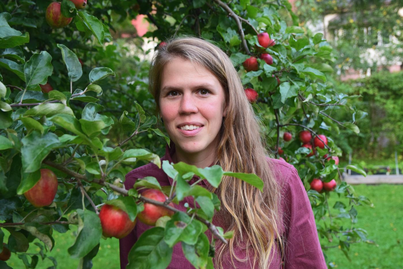 omenapuiden alla9.jpg