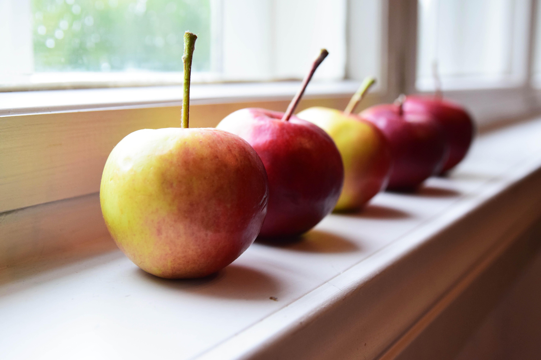 omenat rivissä2.jpg
