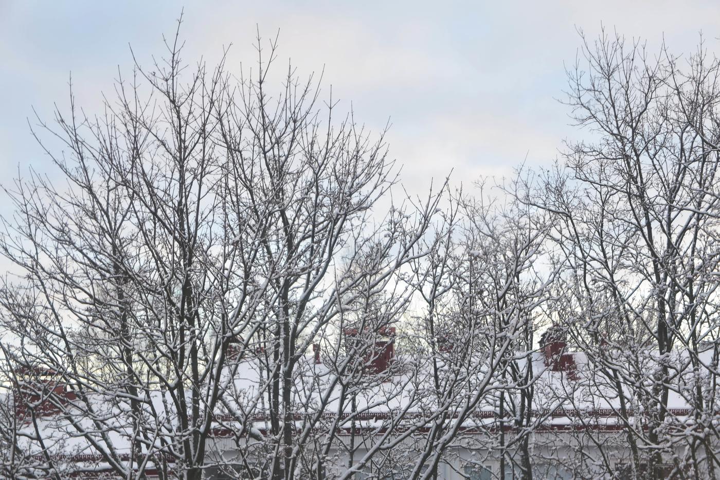 talvinen maisema2.jpg
