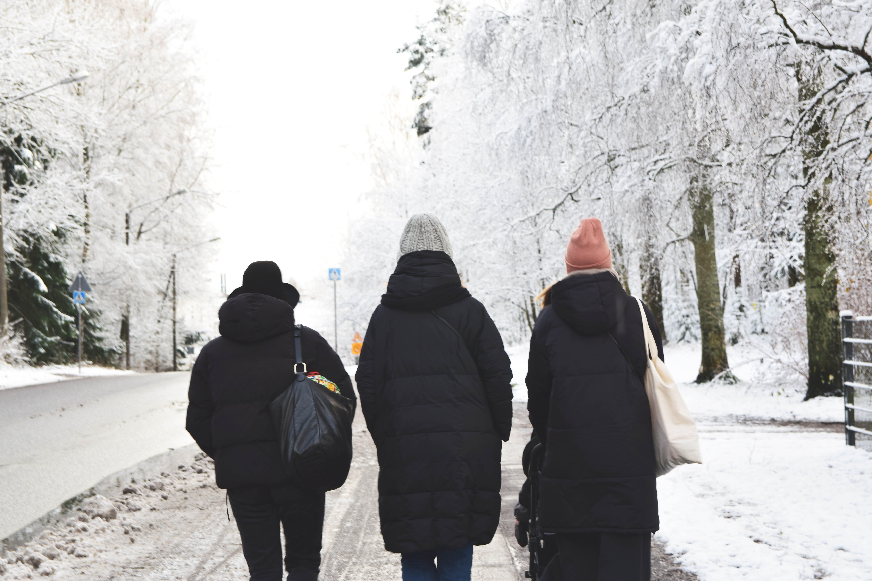 ystävät talvi2.jpg