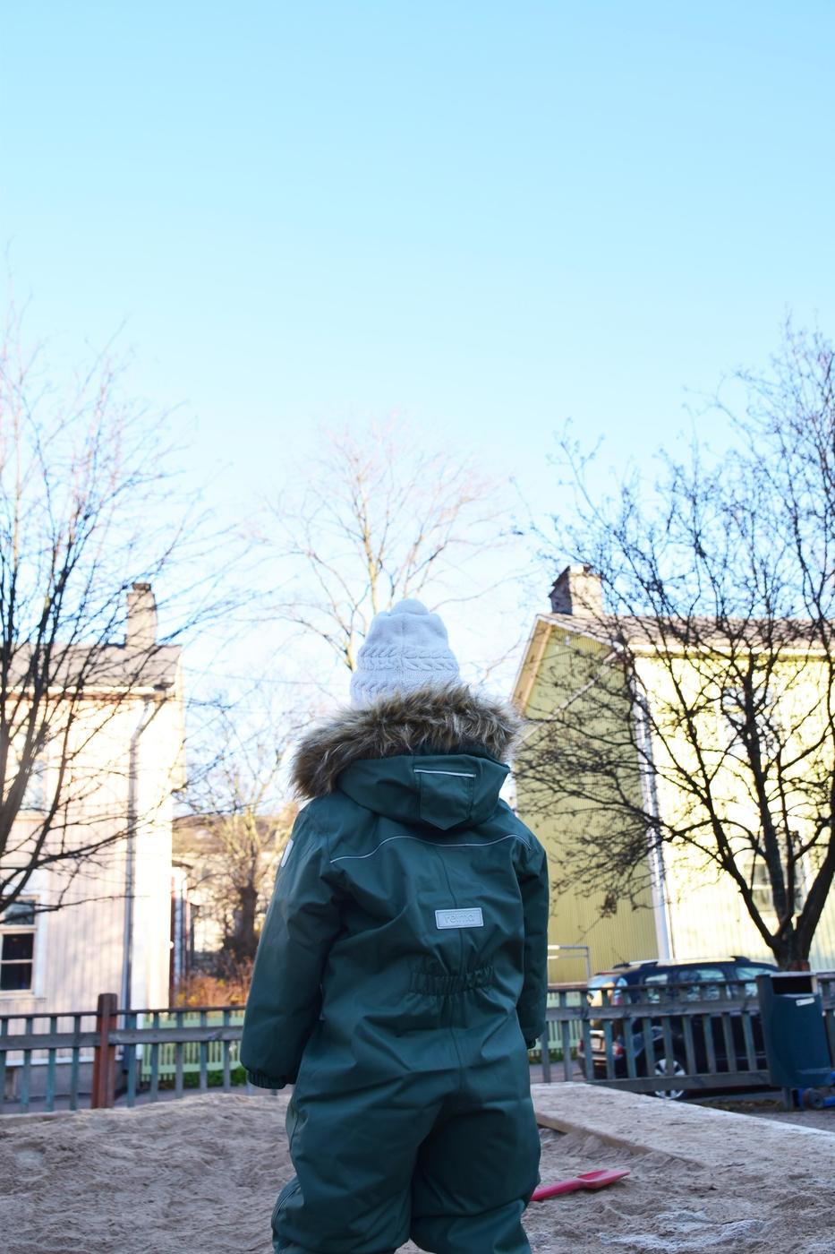 marraskuussa puistossa3.jpg