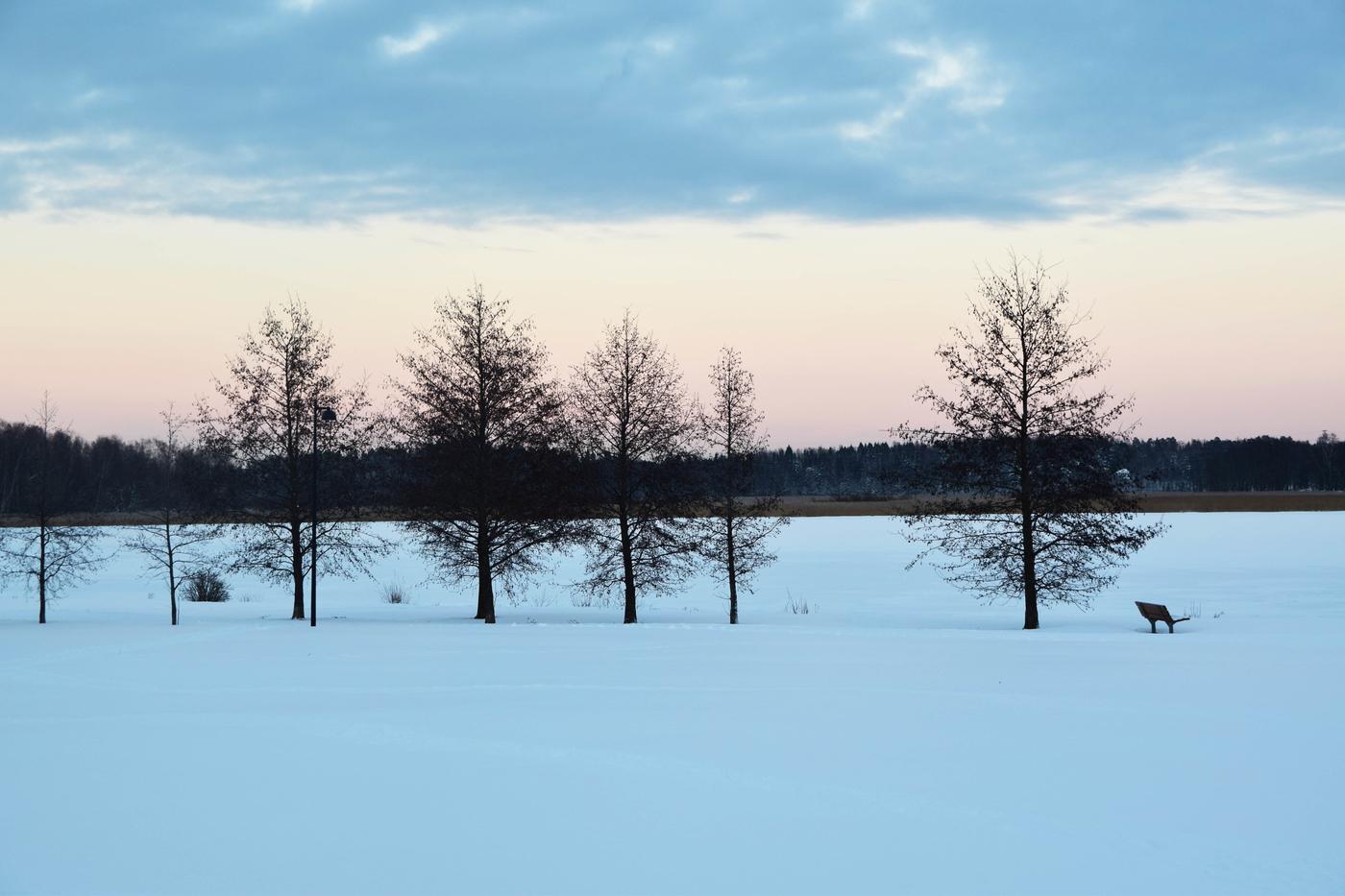 arabianranta talvi2.jpg