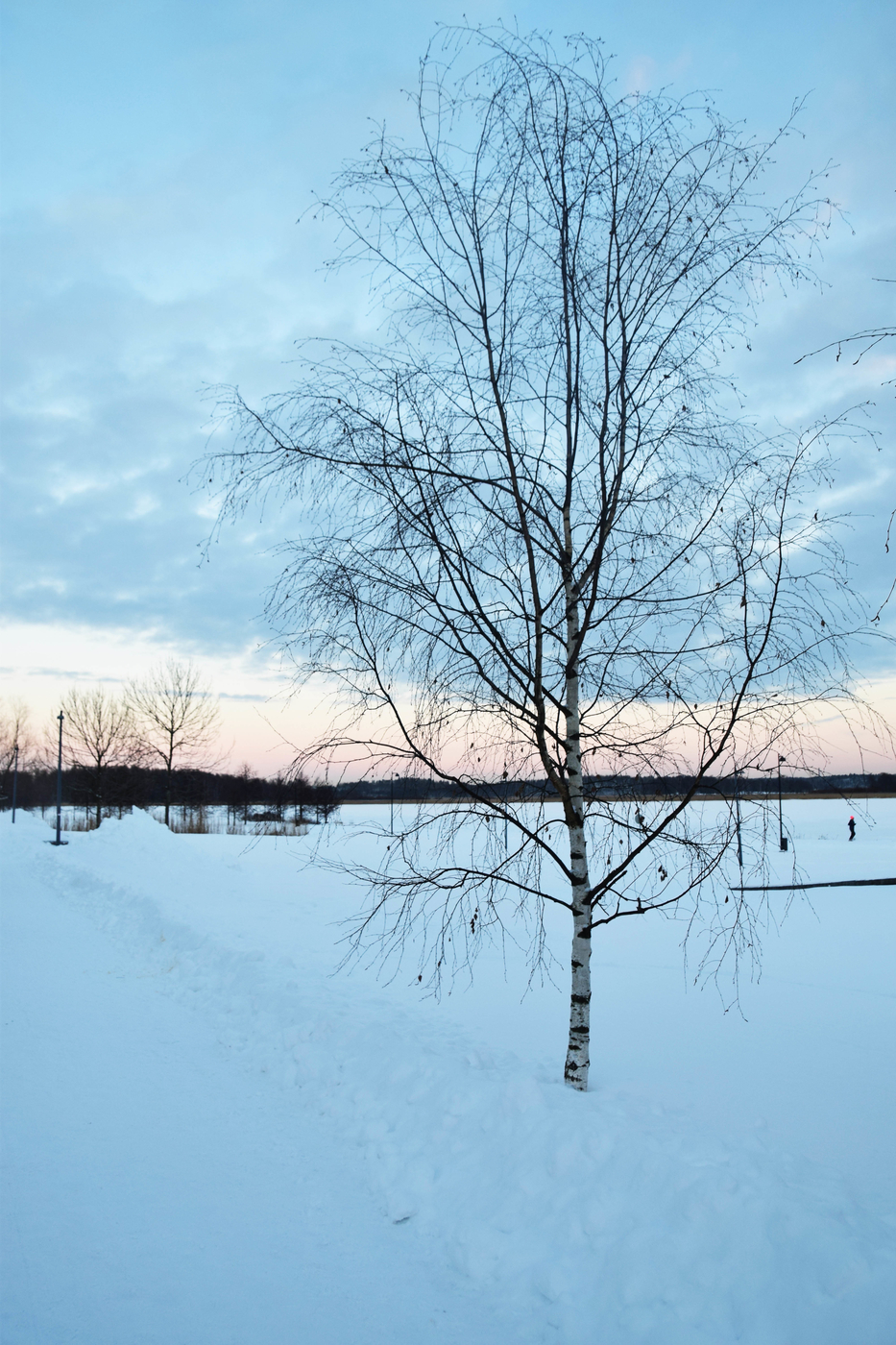 arabianranta talvi6.jpg