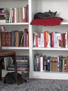 Kirjoja syövä kirjahylly ja muut kirjaraivon lähteet