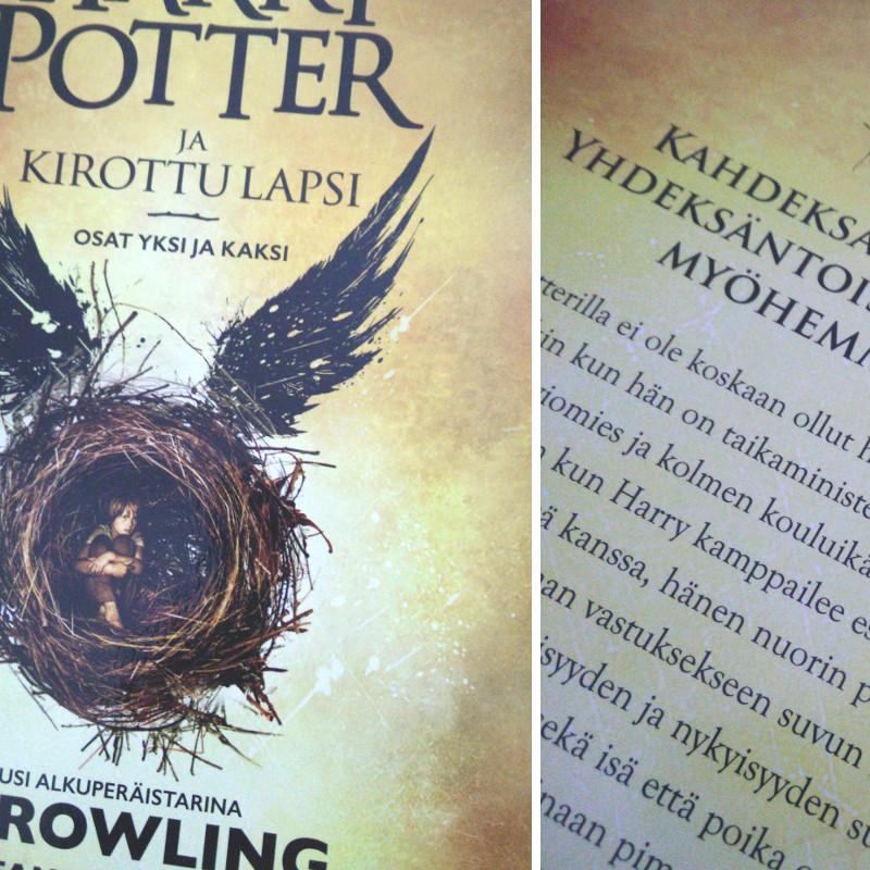 Harry Potter Rooleissa