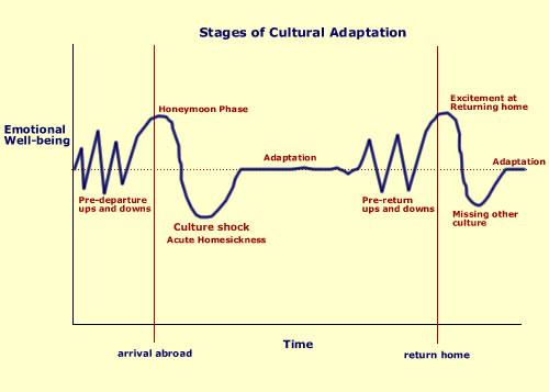 cultural_adaptation.jpg