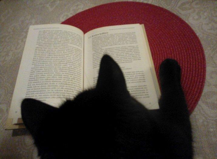 Laku lukee kirjaa.jpg