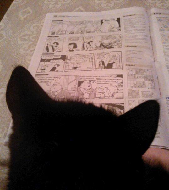 Laku lukee lehteä.jpg