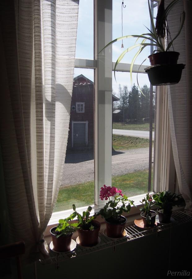 lakeus_ikkuna.jpg