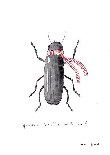 ground-beetle-scarf-470.jpg