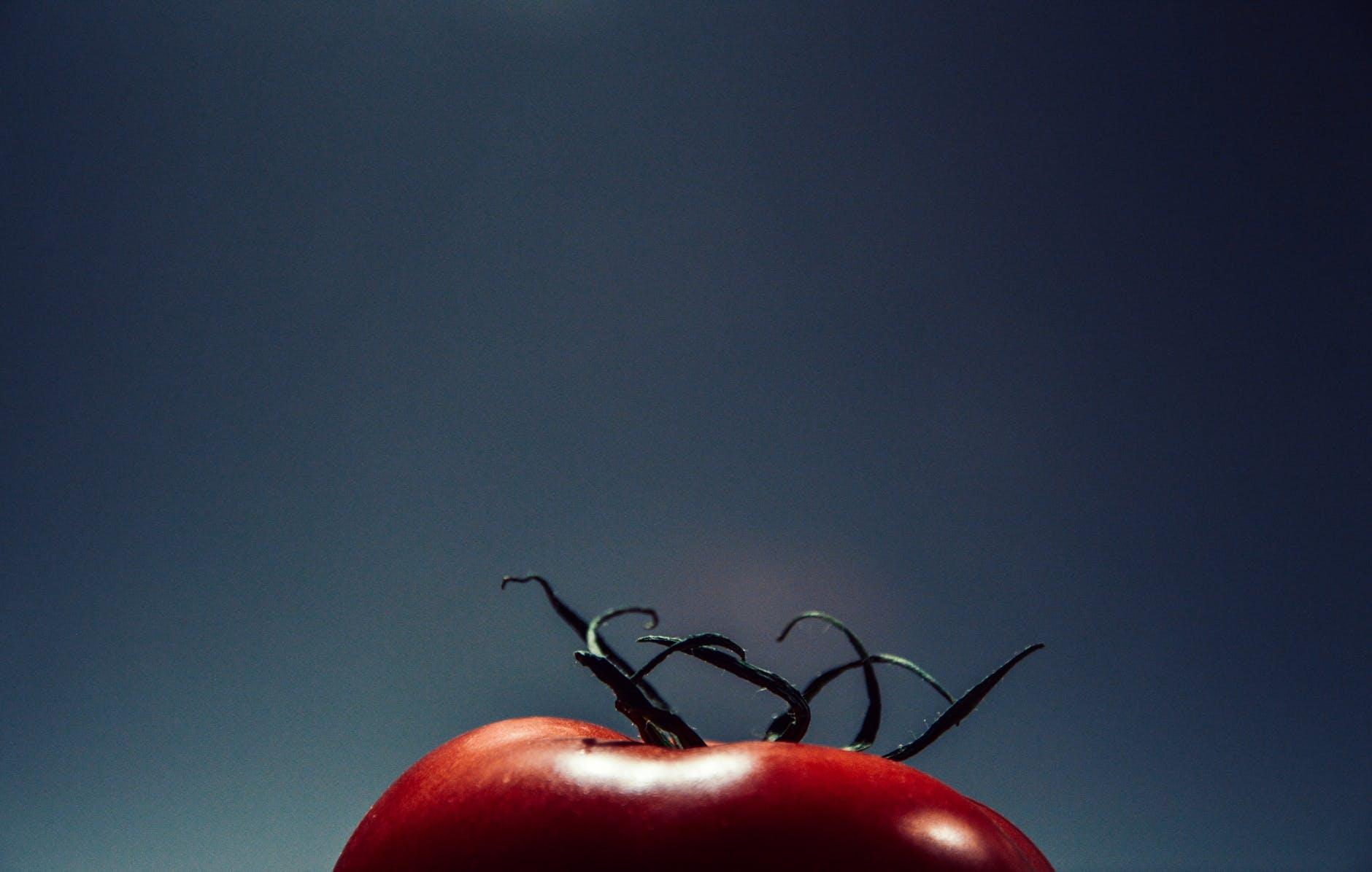 night-tomato.jpg