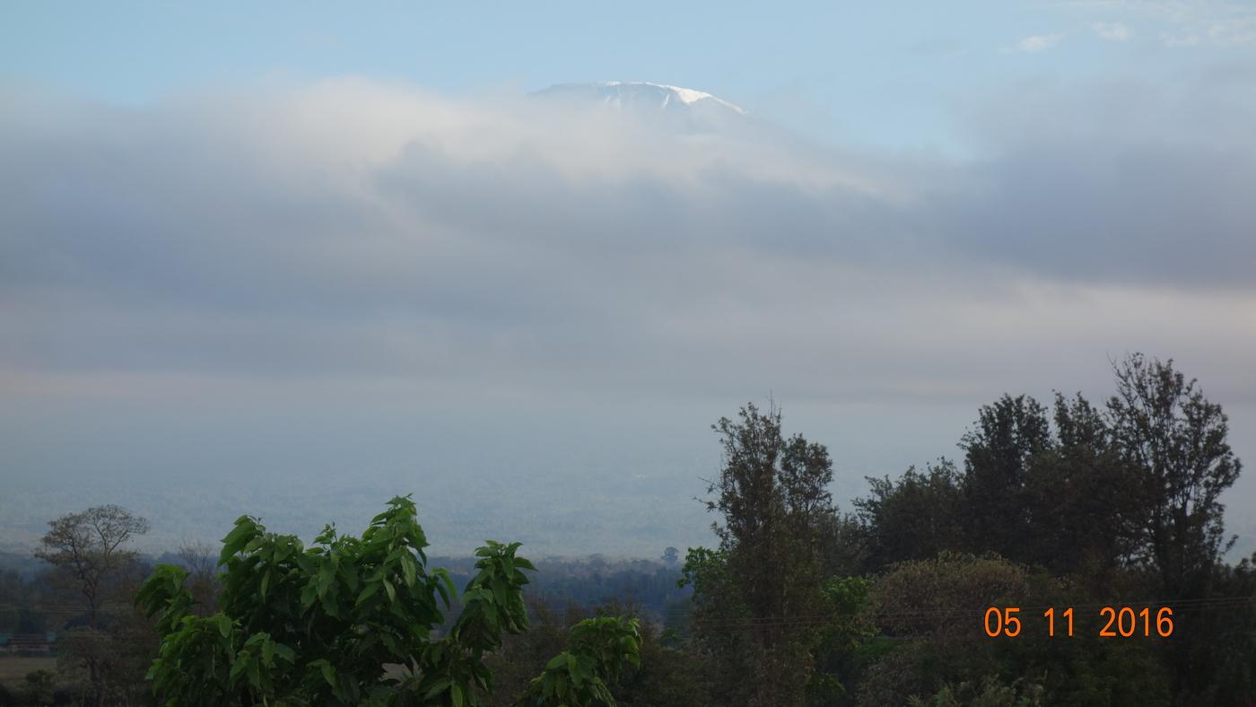 Kilimanjaro 373.JPG
