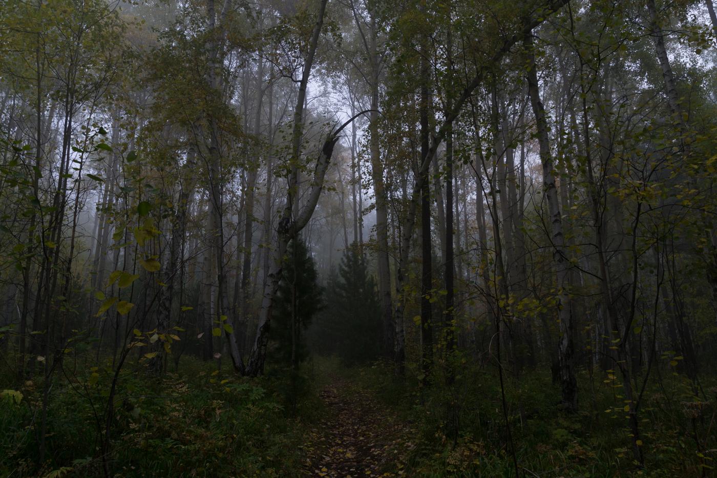 listvyanka-4.jpg