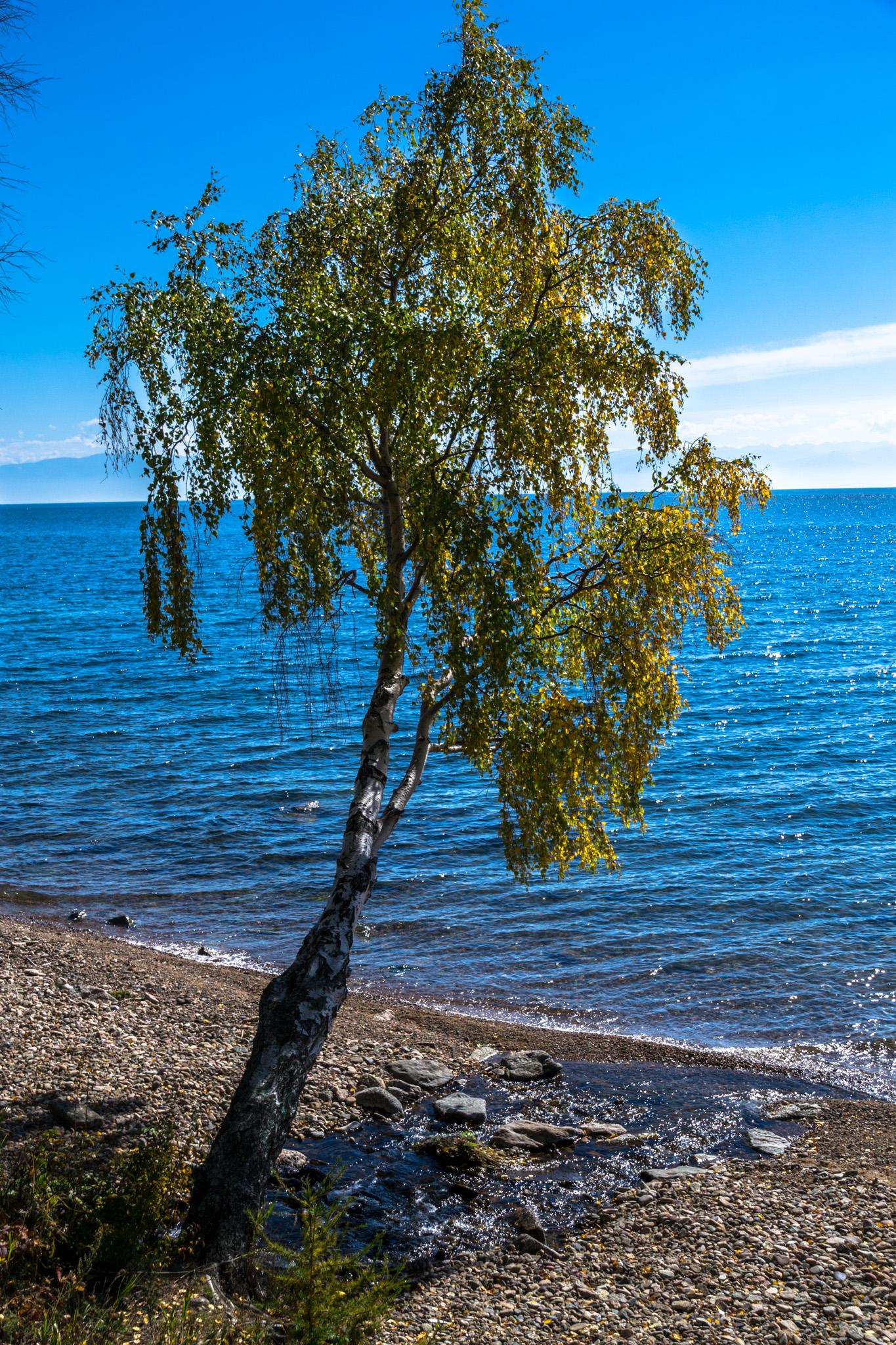 listvyanka-8.jpg