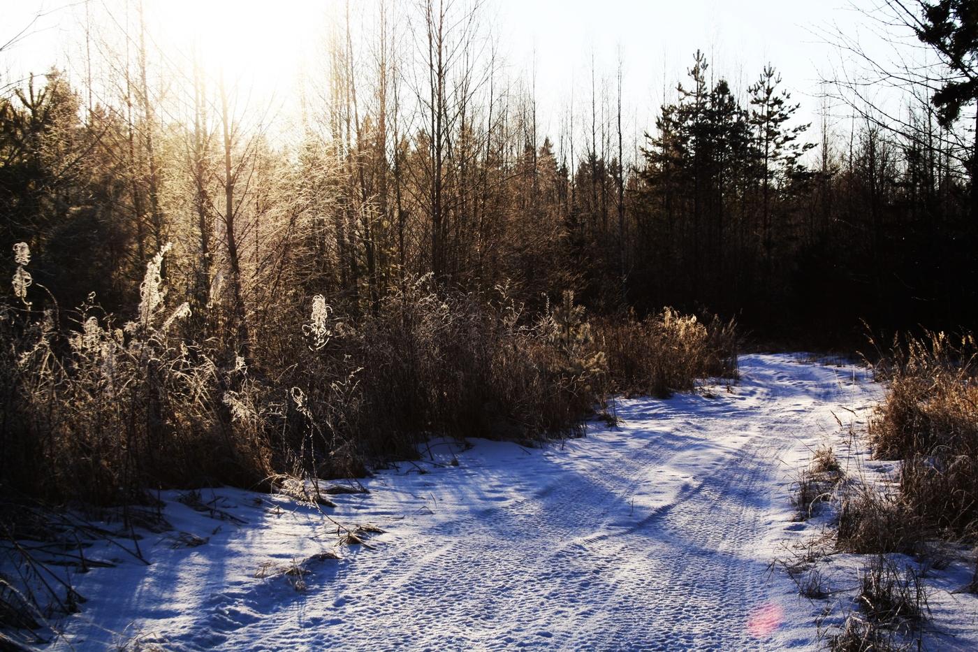 Rakas harrastus – luontoretkeily