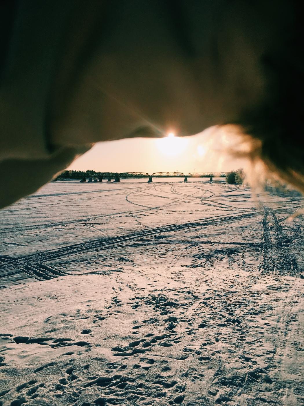 Taidankin rakastaa talvea enemmän
