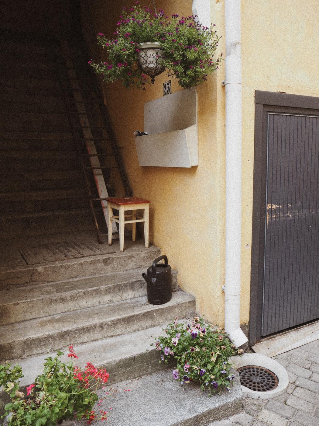 stilllifeblogi5.jpg