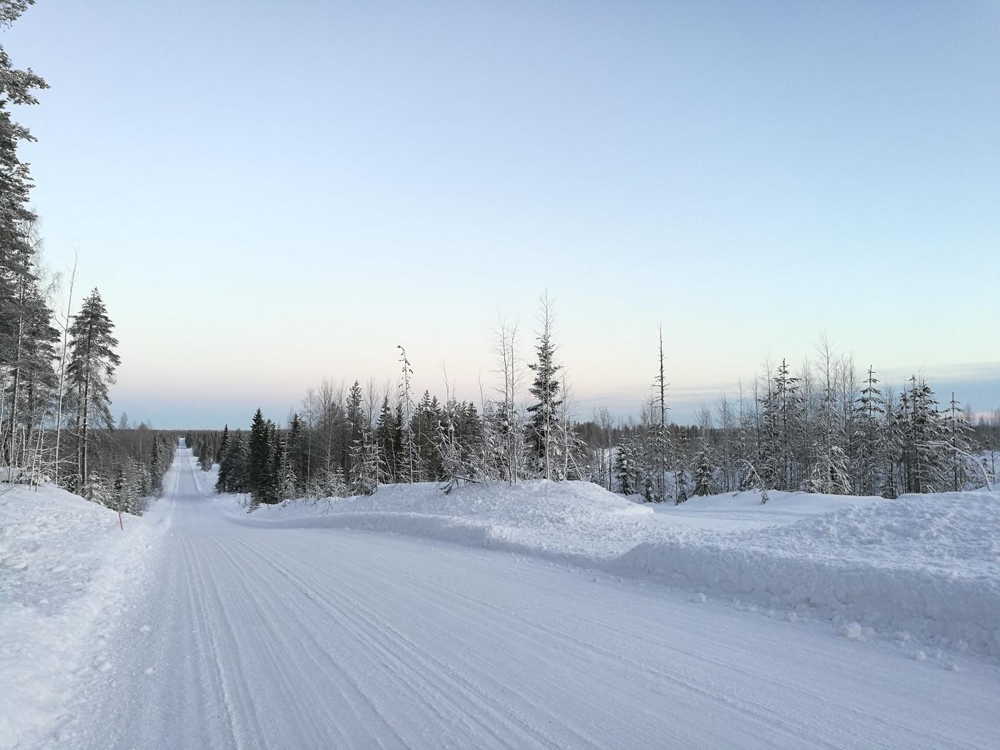 Juoksua ja hiihtoakin – Viikko 2