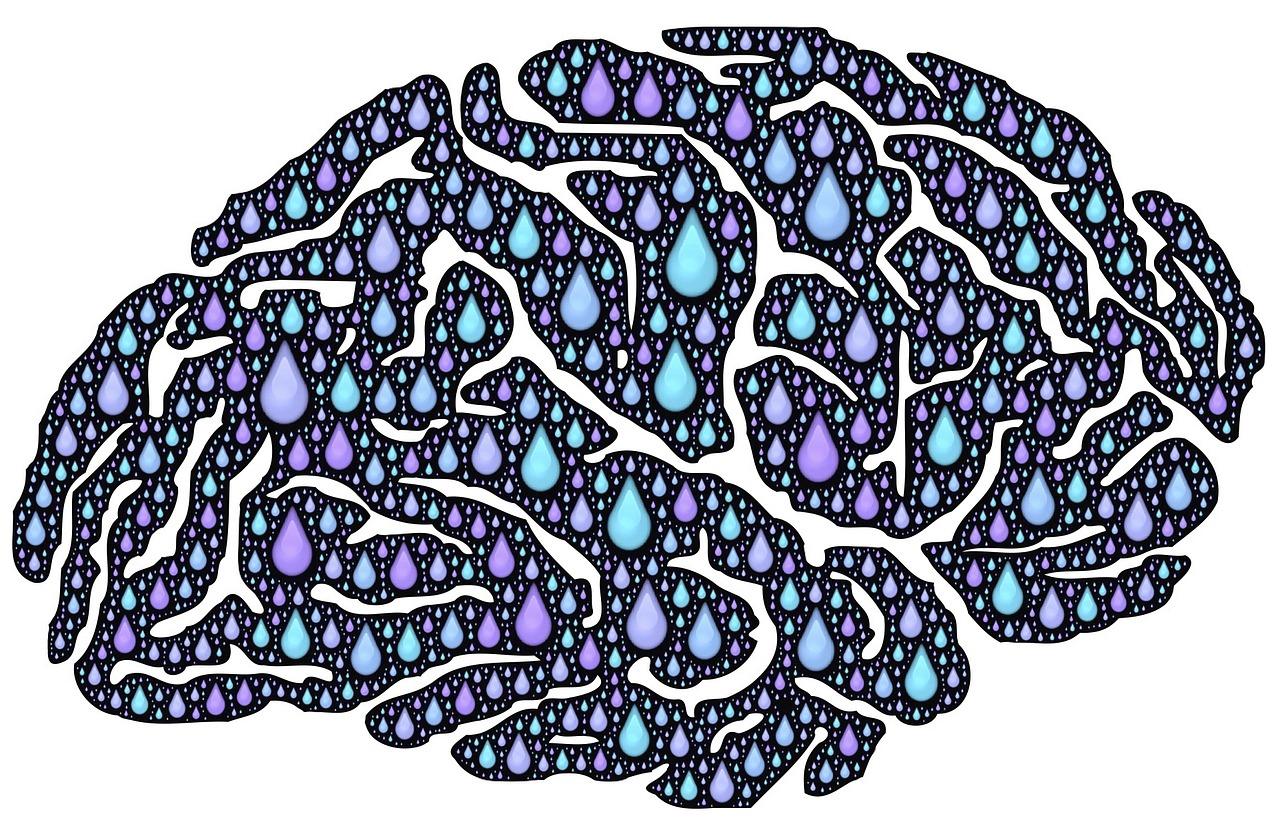 brain-962650_1280.jpg