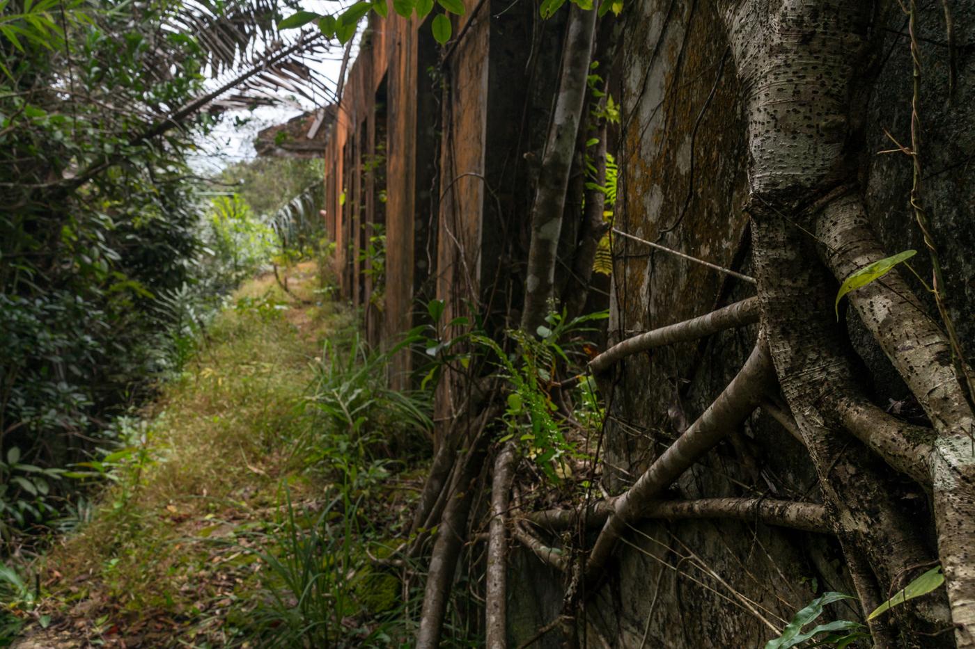 Bokor-black-palace-villas-2.jpg