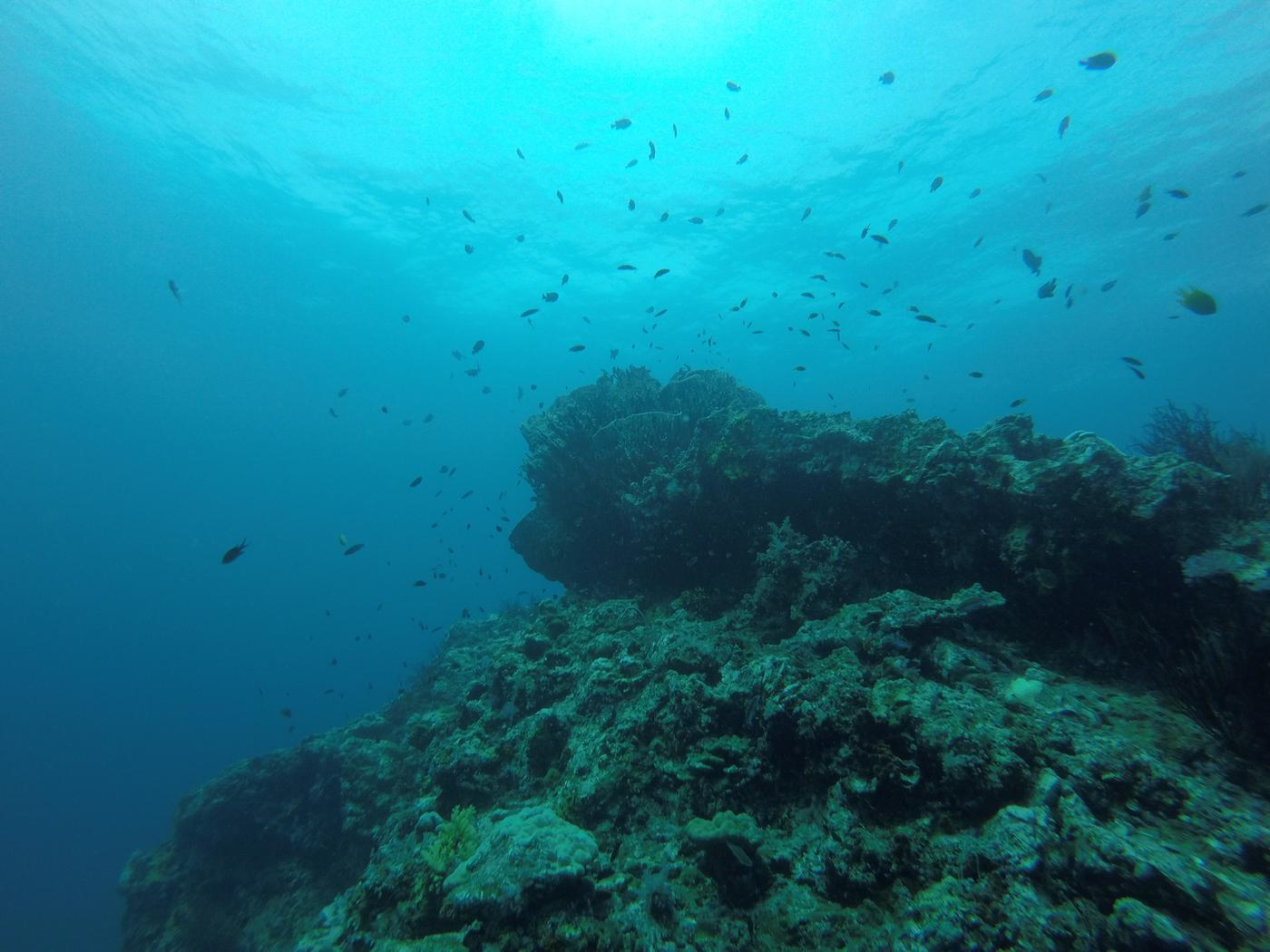 sukellus-16.jpg