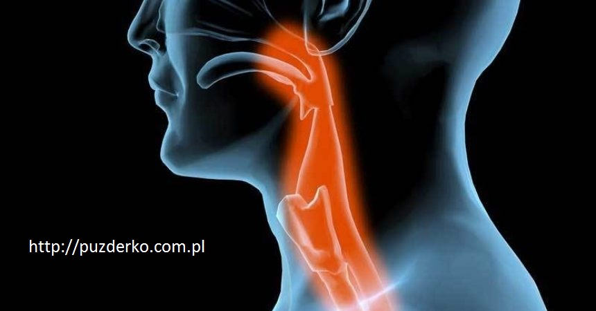 dysfagia-theodysseyonline-860x450.jpg
