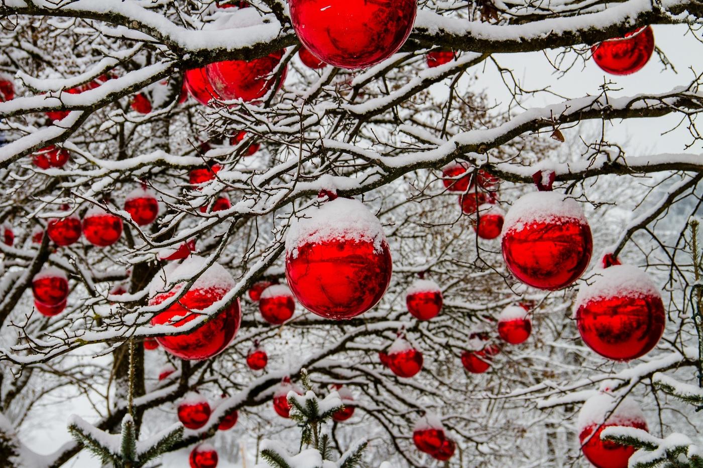 christmas-3009720_1920.jpg