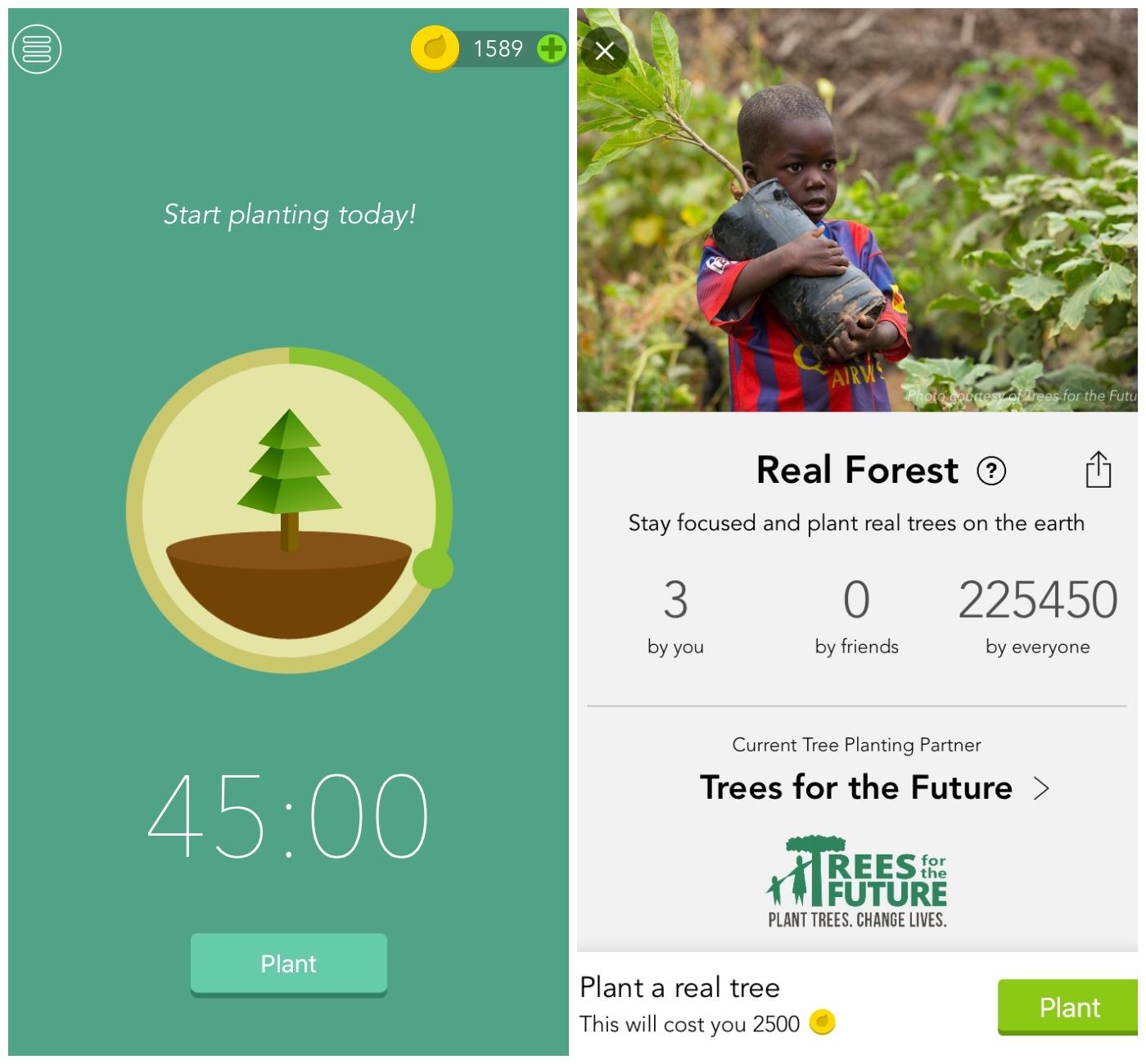 Sovellus-suositus: Forest