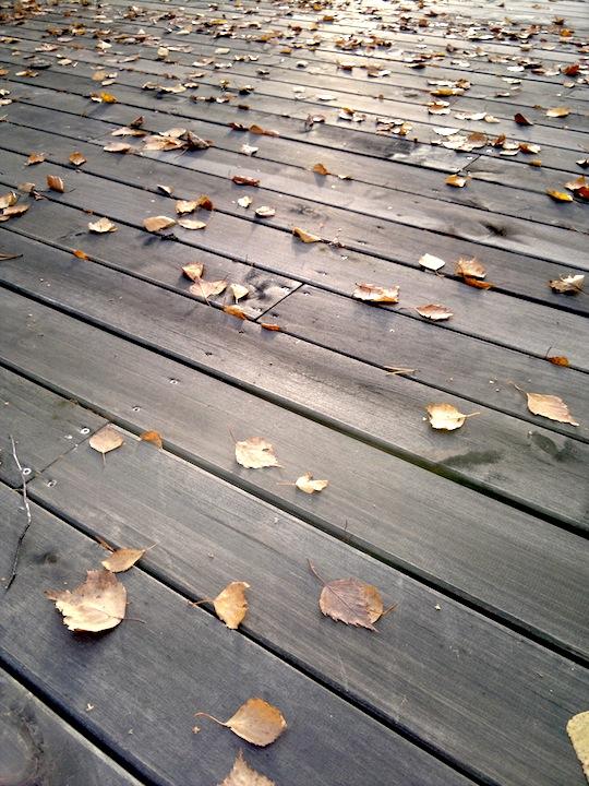 2012-10-20-1025.jpg
