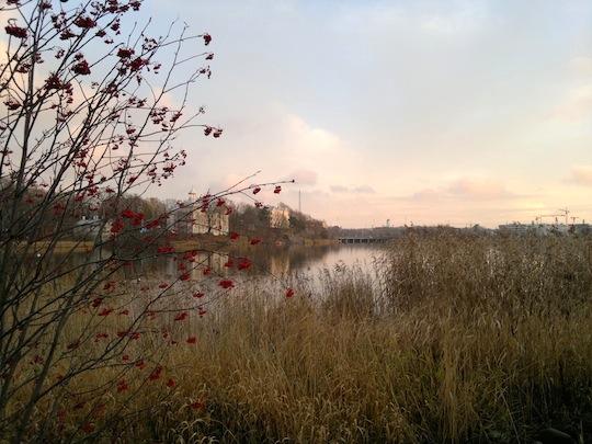 2012-11-03-1348.jpg
