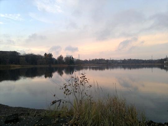 2012-11-03-1349.jpg