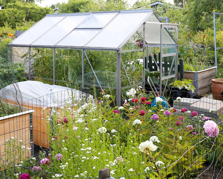 Kesäkuun loppu puutarhamökillä-15.jpg