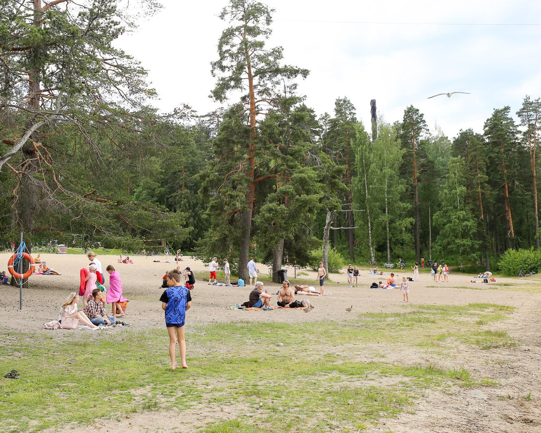 Seikkailupuisto Laajavuori Jyväskylä-18.jpg