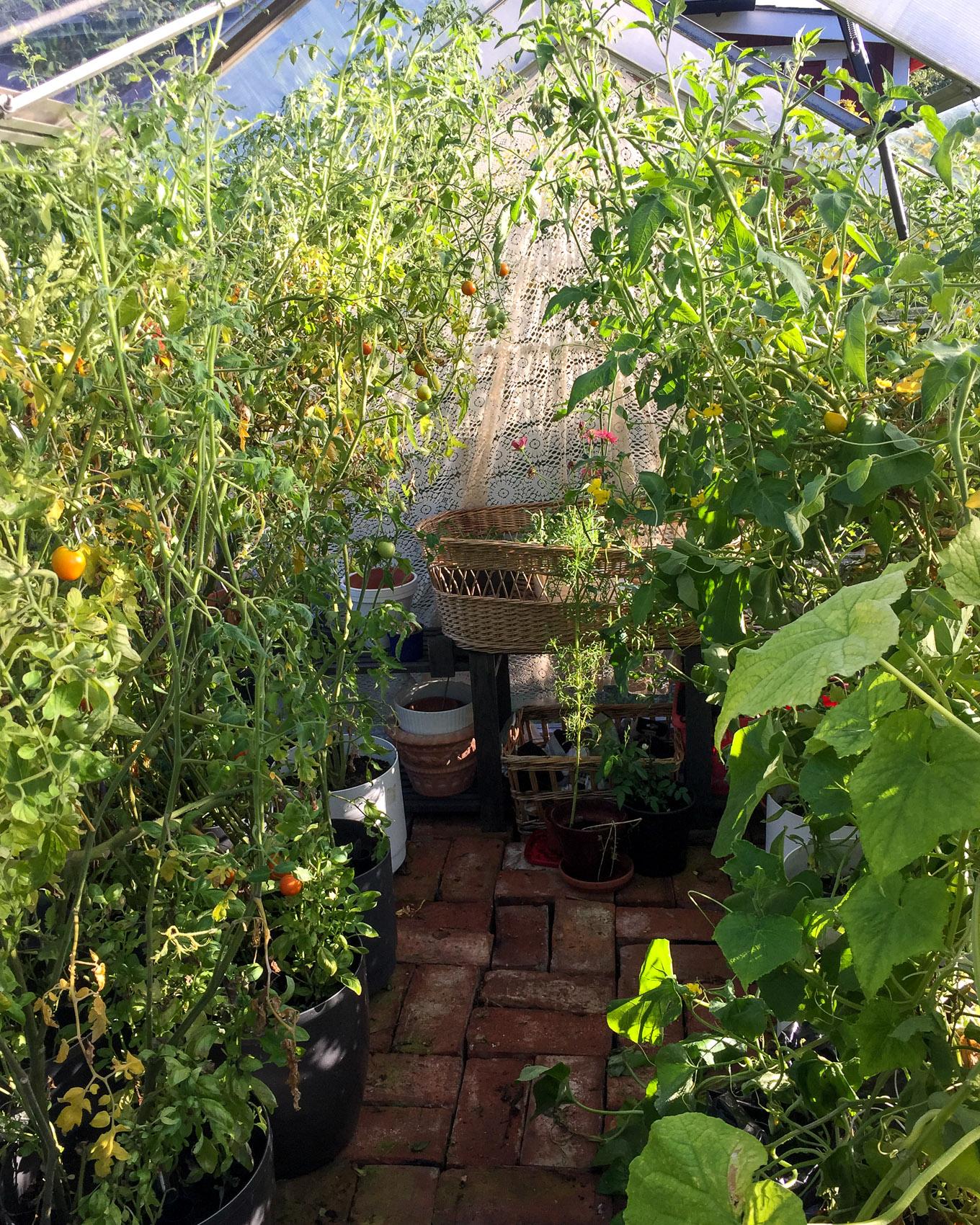 Syksy lähestyy puutarhamökillä-11.jpg