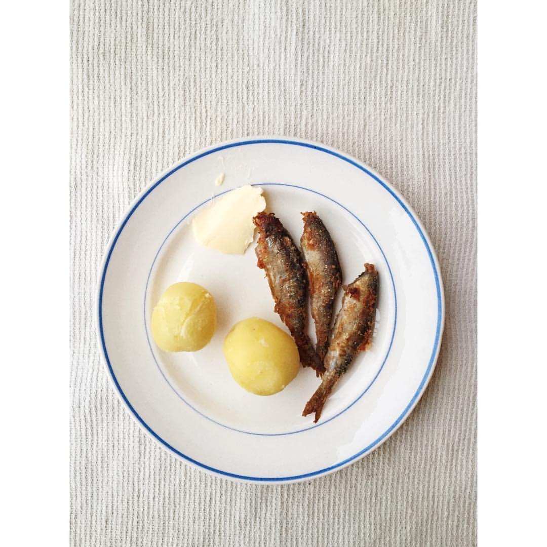 Gastronaatti - muikut.JPG