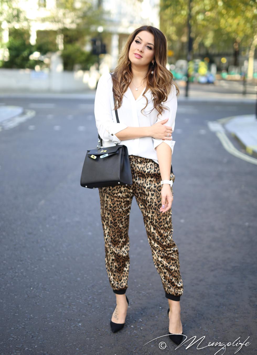 leopard (10 of 14).jpg