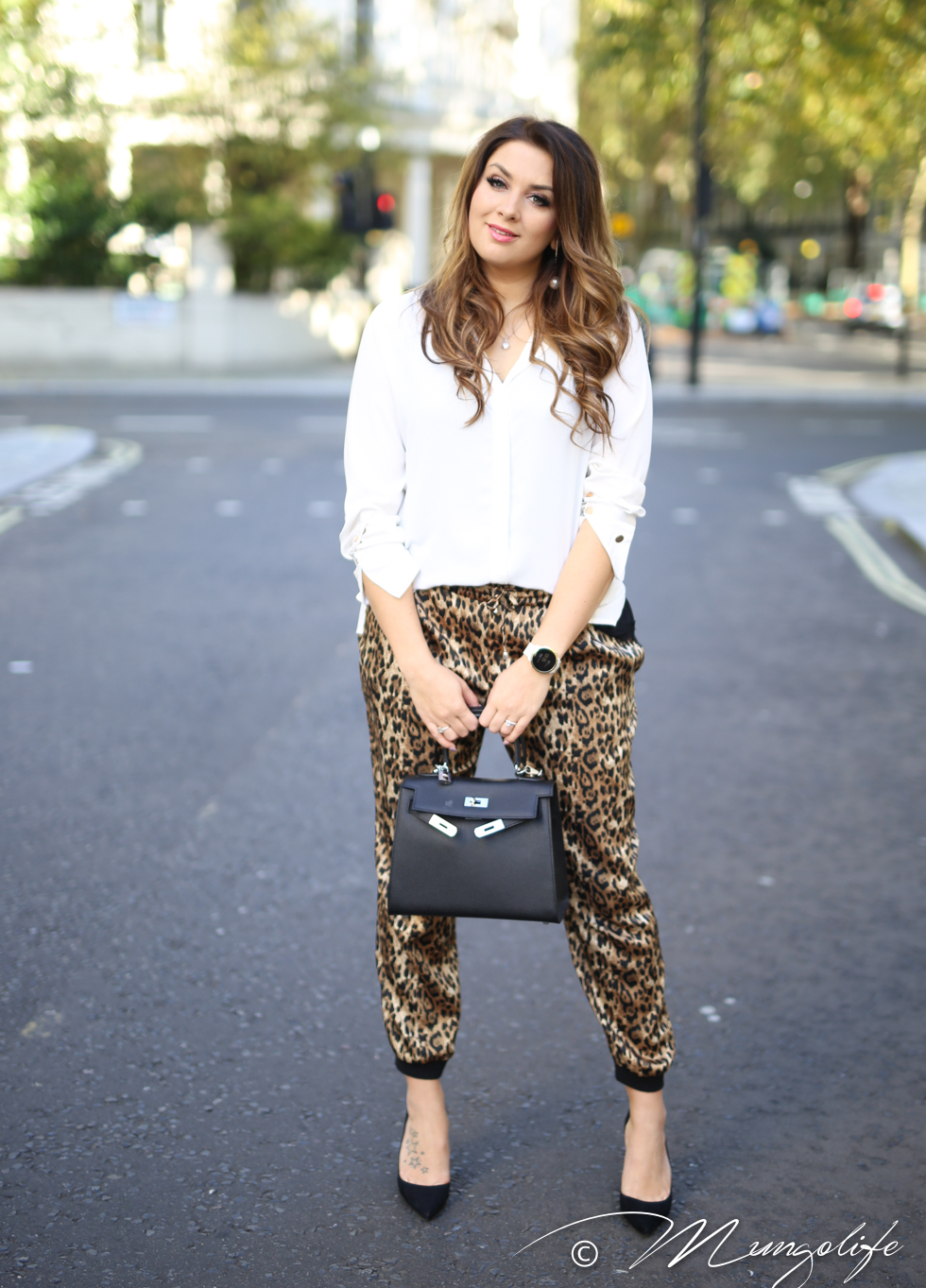 leopard (12 of 14).jpg