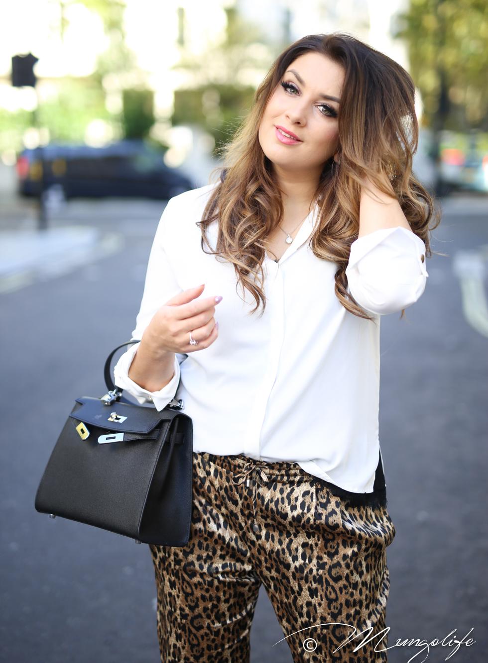leopard (13 of 14).jpg