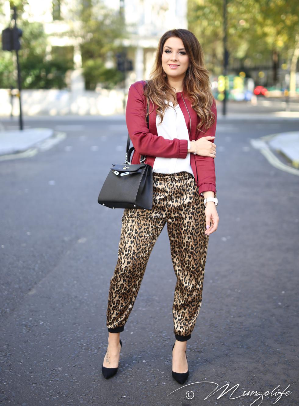 leopard (1 of 14).jpg