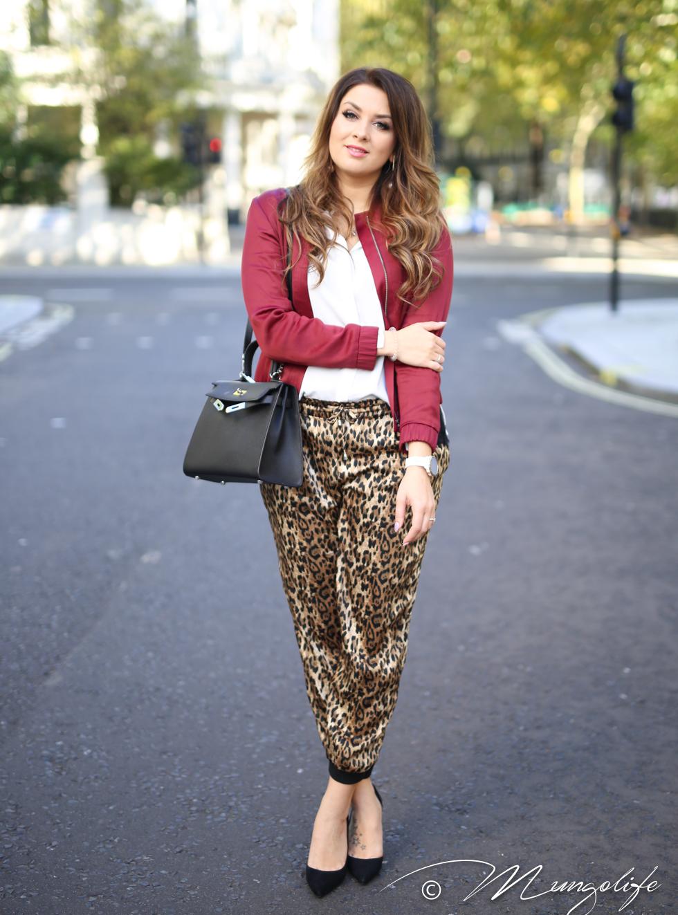 leopard (2 of 14).jpg