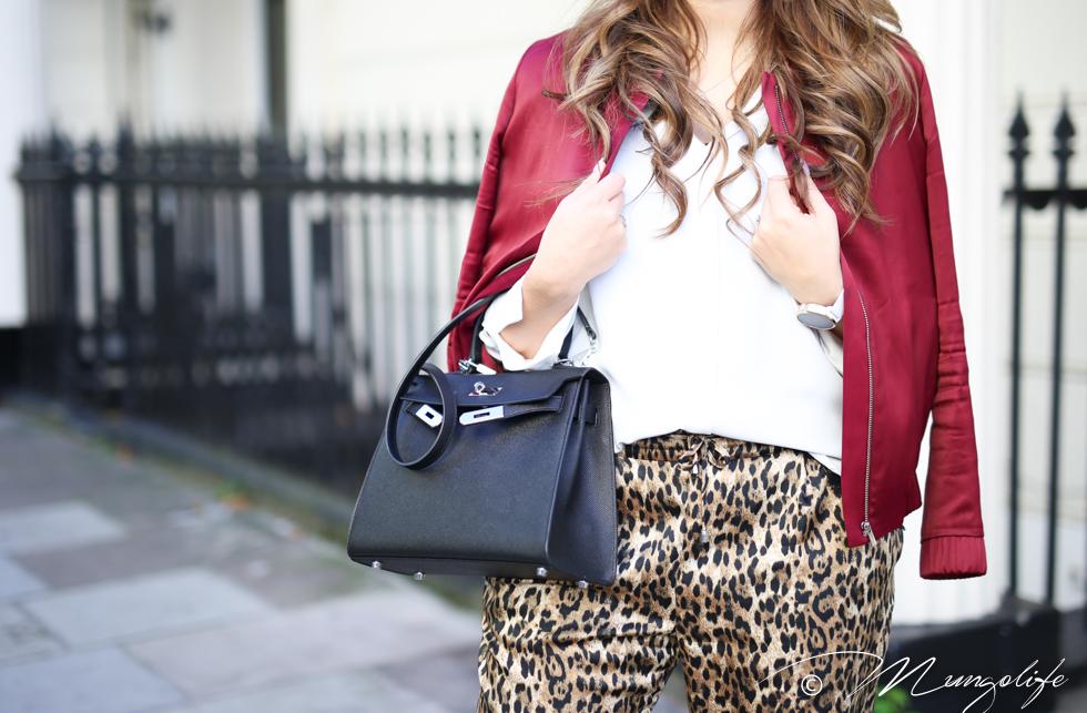 leopard (7 of 14).jpg