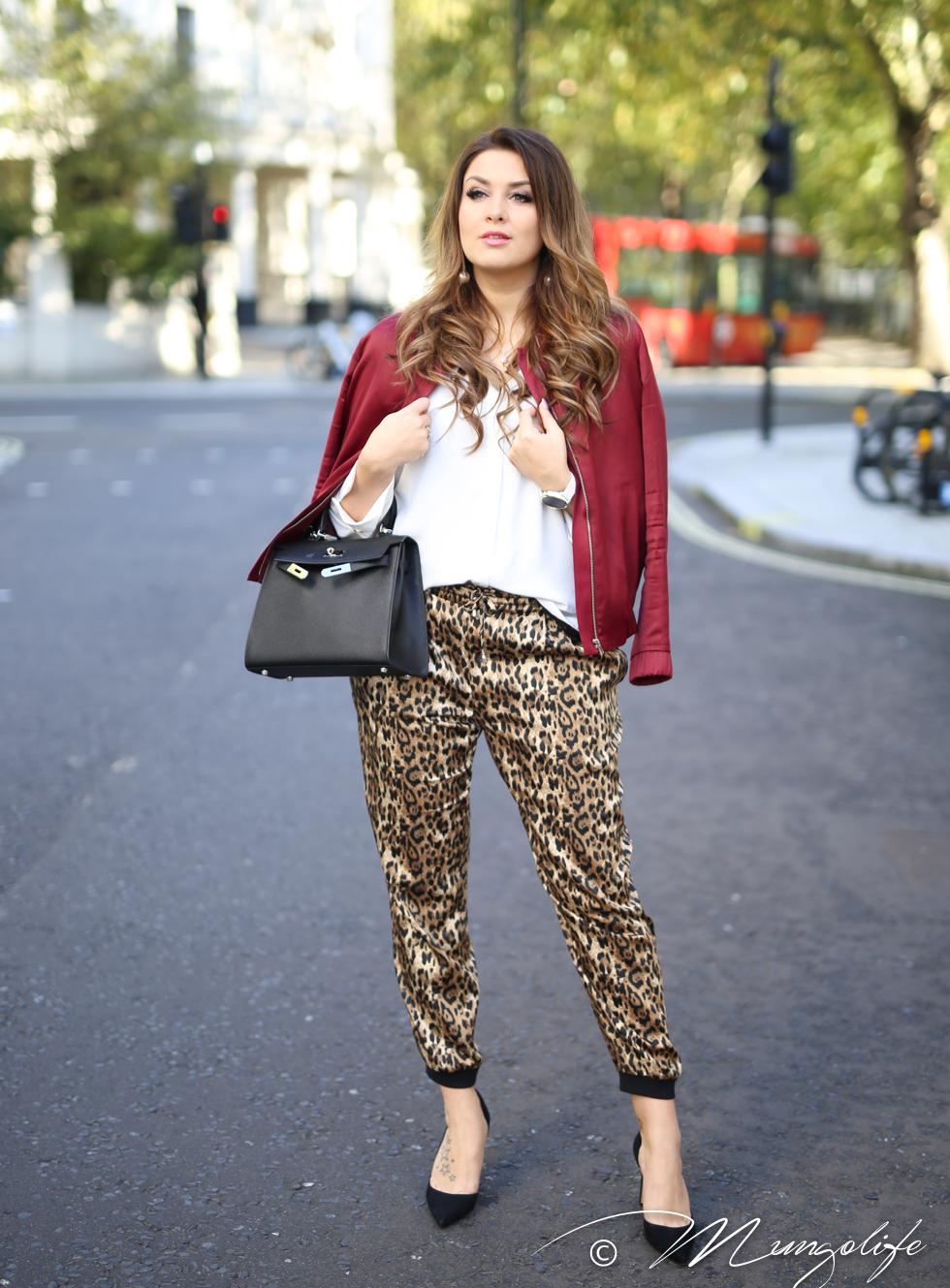 leopard (9 of 14).jpg