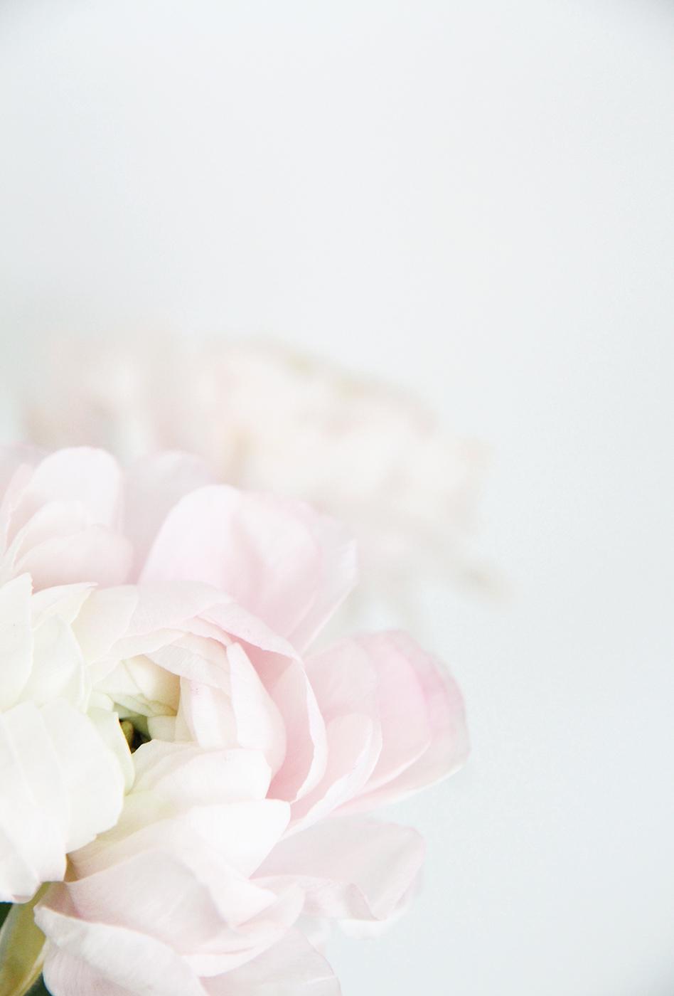 hunajaista sisustusblogi phography riikka timonen interor flowers leikkokukat pioni.jpg