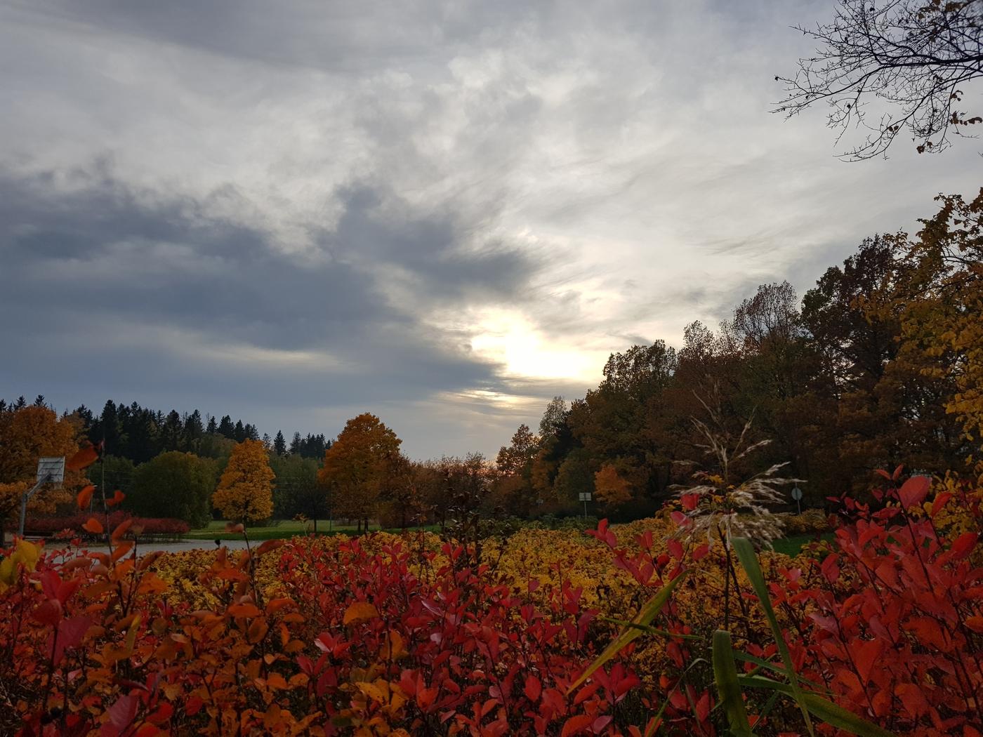 colours_fall_finland.jpg