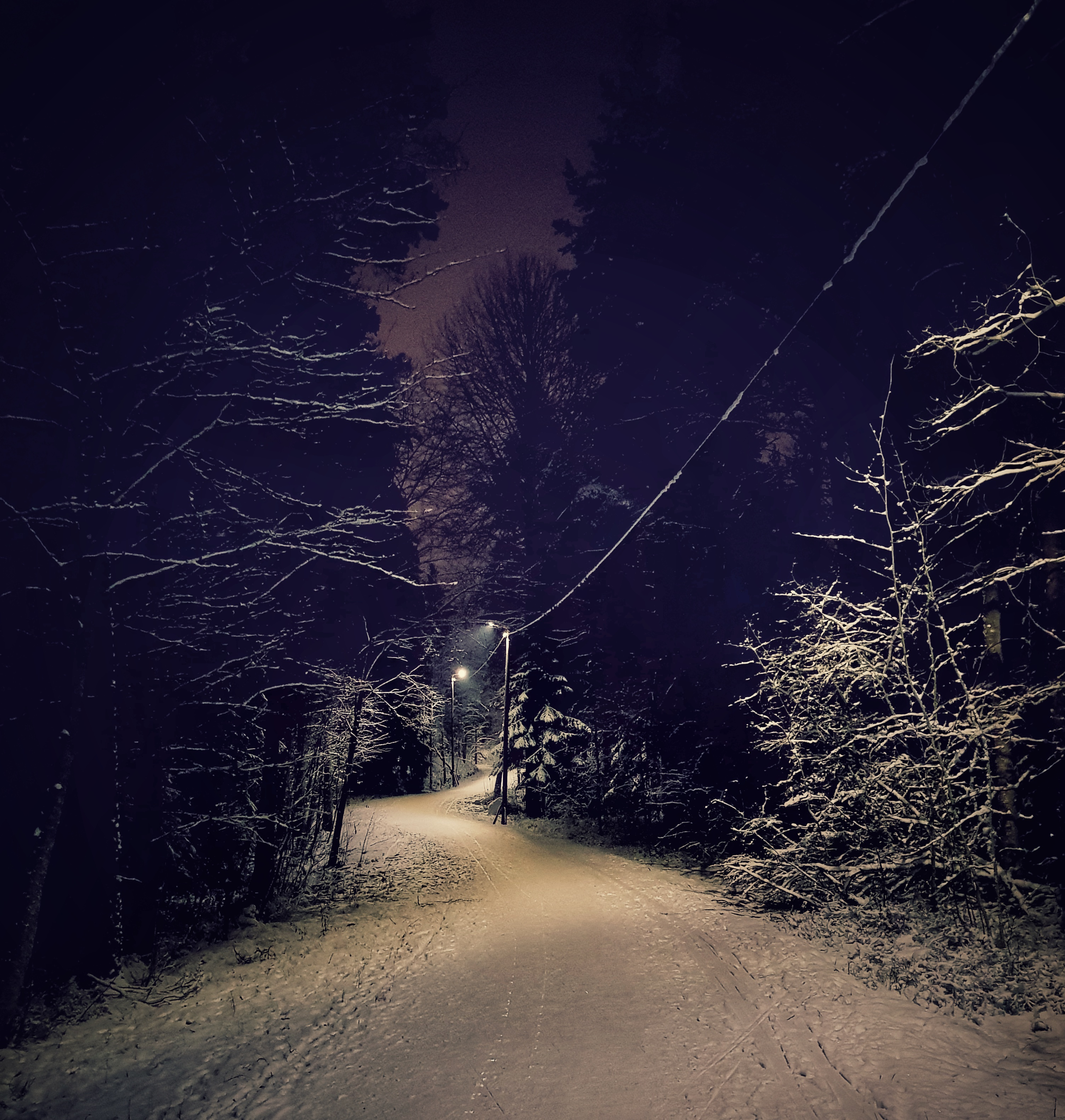 luminenpolku.jpeg