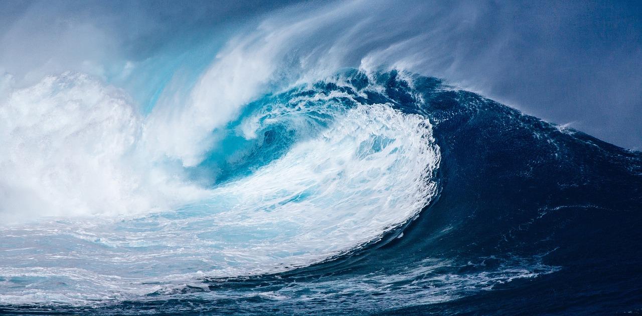 wave-1913559_1280.jpg